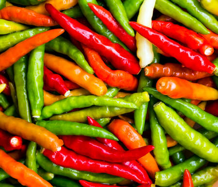 Colorful chili with orange, red, green background