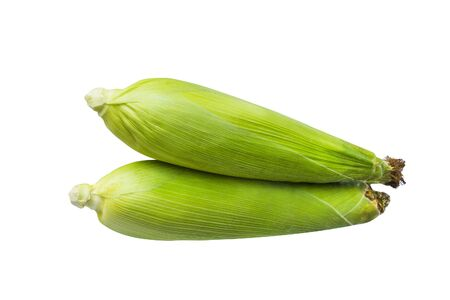 Sweet corn with green peel isolated on white