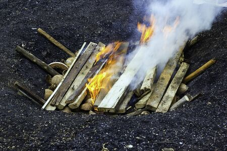 Charcoal burn from wood on soil