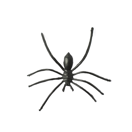 arachnid: Fake rubber spider toy isolated over the white background Stock Photo