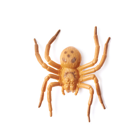 artificial leg: Fake rubber spider toy isolated over the white background Stock Photo