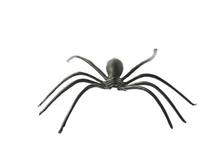 crawly: Fake rubber spider toy isolated over the white background Stock Photo