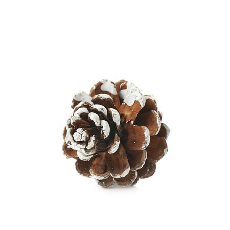 snow cone: Single decorational pine cone covered with the artificial snow, composition isolated over the white background