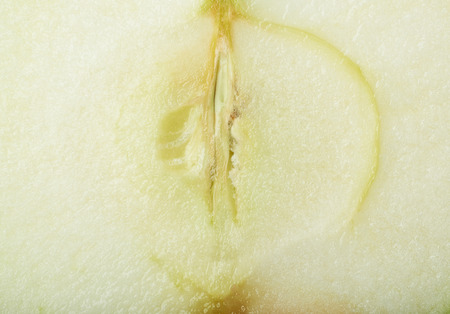 apple core: Sliced apple core close-up texture as a background composition