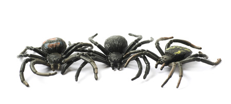 few: Pile of few fake rubber spider toys, composition isolated over the white background