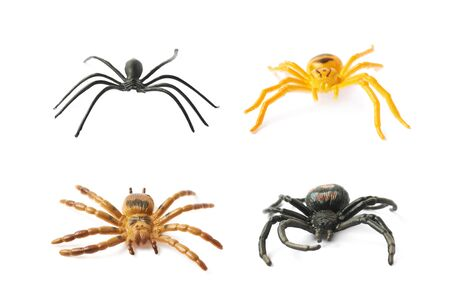 arachnid: Fake rubber spider toy isolated over the white background, set of four different foreshortenings Stock Photo