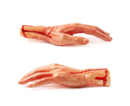 severed: Fake rubber severed hand as a Halloween prank toy, isolated over the white background, set of two different foreshortenings