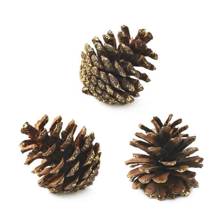 pine three: Single decorational pine cone covered with golden glitter isolated over the white background, set of three different foreshortenings