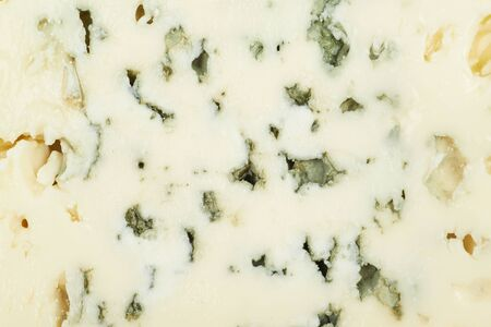 roquefort: Blue roquefort cheese texture fragment as a backdrop composition Stock Photo