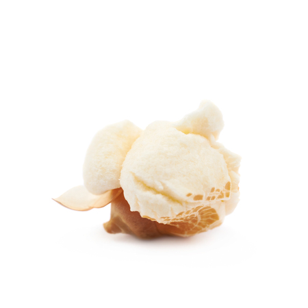 popcorn kernel: Semi-opened popcorn kernel isolated over the white background
