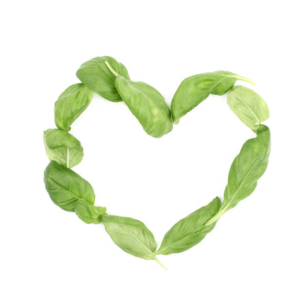 Heart shape made of basil leaves isolated over the white background
