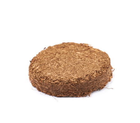 Compressed compost tablet isolated Stock Photo