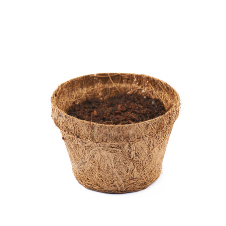 degradable: Degradable coconut pot isolated