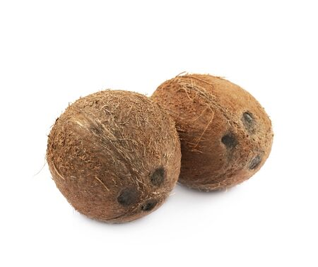 Couple of coconuts isolated Stock Photo