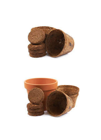 Degradable coconut pot isolated