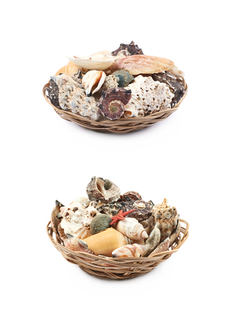 Wicker basket full of sea shells isolated over the white background, set of two different foreshortenings Stock Photo