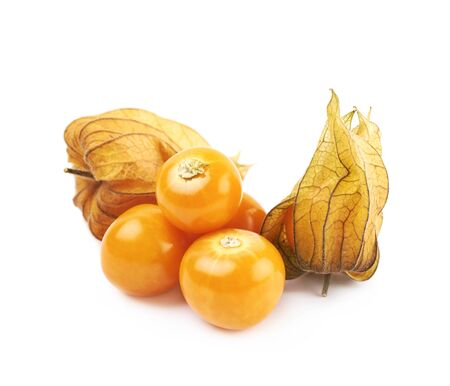 Composition of couple physalis fruits