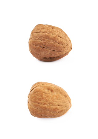 Single walnut isolated over the white background, set of two different foreshortenings