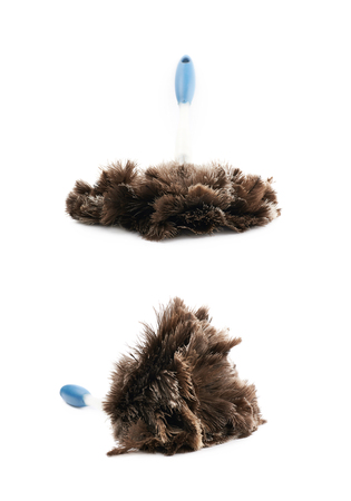 Feather stick duster isolated Stock Photo