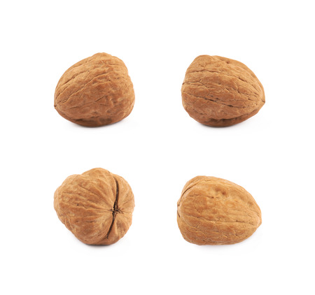 Single walnut isolated over the white background, set of four different foreshortenings