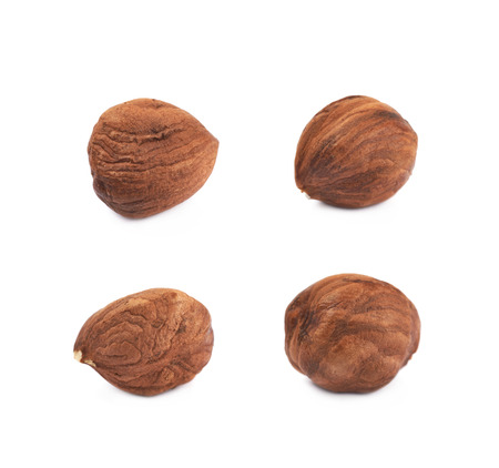 Single hazelnut isolated over the white background, set of four different foreshortenings Stock Photo - 93280548