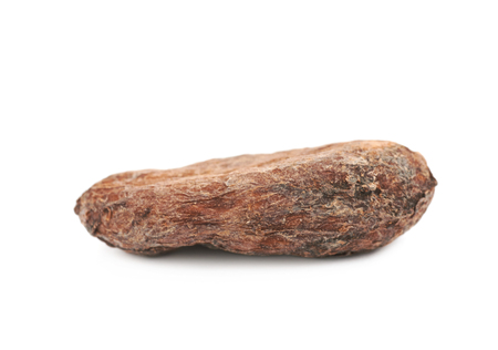 Single cocoa bean isolated over the white background