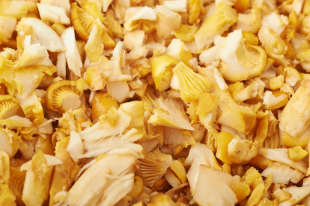 Surface coated with the sliced chanterelle mushrooms, close-up crop as a backdrop composition Stock Photo