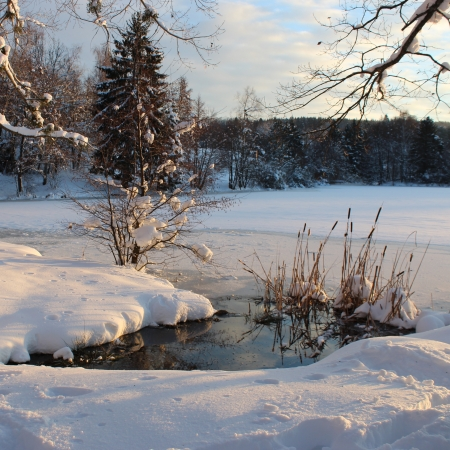 miror: snowy landscape