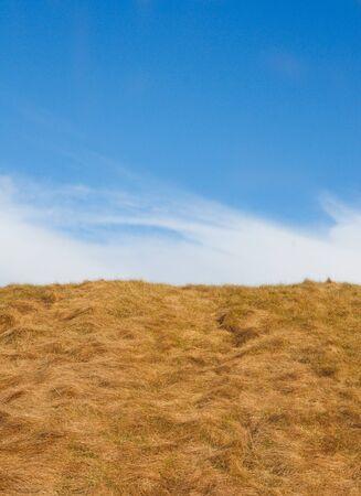 Hay Hill Фото со стока