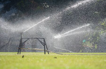 sward: Sprinkler watering the grass of the football field