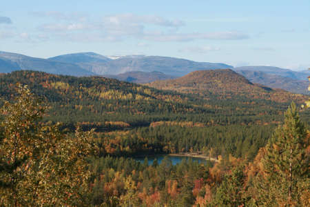 norge: mount in norge. trevel. lake in forest