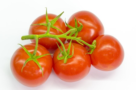 branch of fresh and juicy tomatoes on a white background