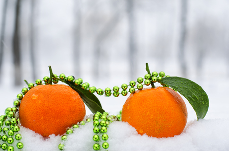 contradiction: Fresh and juicy tangerine on the cold snow Stock Photo