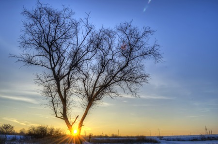 sunrise on a cold and snowy winter day Stock Photo