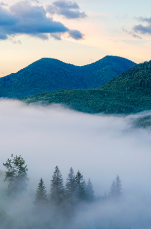 thick fog in the mountains envelops the earth at sunrise Banco de Imagens