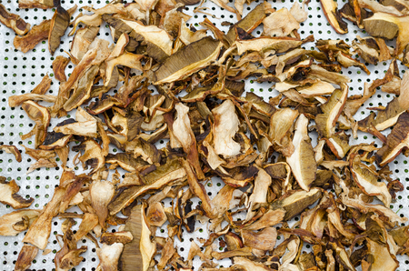 sliced mushrooms are dried on drushlak outside in sunny weather
