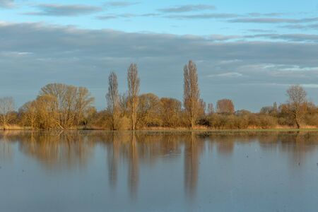 Trees reflecting in the water of a flooded meadow