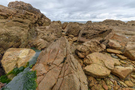 Rocks at low tide on the French Atlantic coast