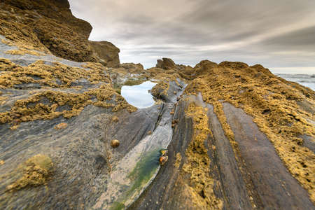 Rocks at low tide on the French Atlantic coast.