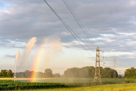 Watering a cornfield in times of intense drought.