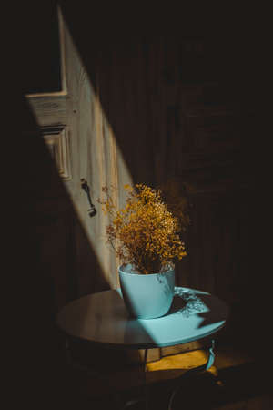 Pale blue vase with decorative dry plants illuminated by a beam of sunlight Zdjęcie Seryjne