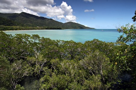 tribulation: Cape Tribulation, Far North Queensland