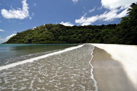 daintree: Cape Tribulation, Far North Queensland