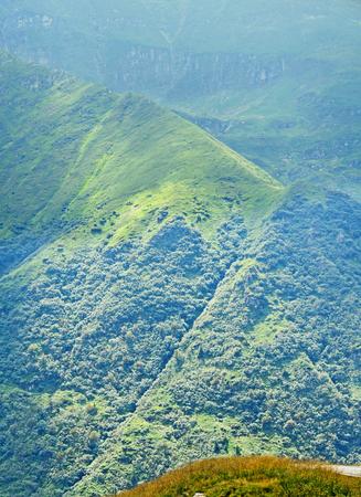 Fagaras mountains, Carpathians with green grass and pine forests, Transfagarasan road