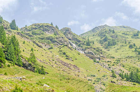Carpathian mountains, Fagaras hills with green forest pines and grass, Transfagarasan road, blue clouds sky