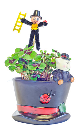 Chimney sweeper over green Oxalis, purple spots, known as wood sorrels, clover four leaves, close up. Flower pot with ceramic pig. Brings luck, used as lucky charm. Stock Photo