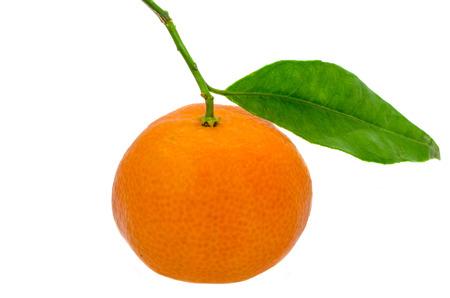 citrus reticulata: The mandarin orange (Citrus reticulata), also known as the mandarin or mandarine, isolated, white background.