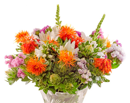 daisys: Vivid colored wild flowers, safflowers, daisys, close up, isolated background