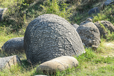 Concretions growing up, old trovant natural formed, cement sand, Romania Europe, close up.
