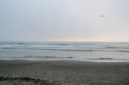 Beach of Black Sea from Mamaia, Romania with water and sand, foggy day. Imagens